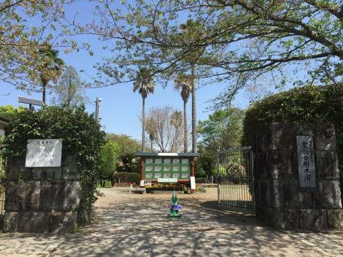 監物台樹木園 (2)