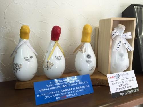 天草オリーブ園AVILO (33)