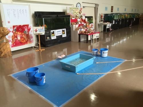 金魚と鯉の郷 (10)