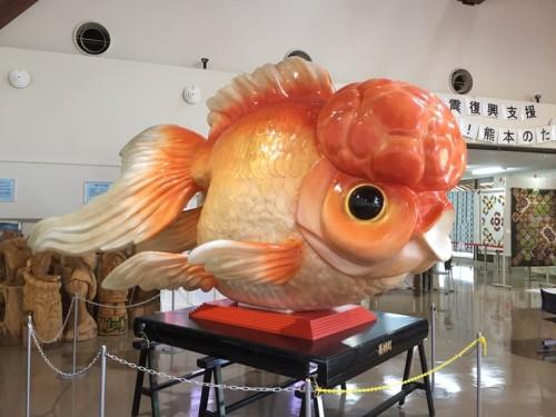 金魚と鯉の郷 (9)
