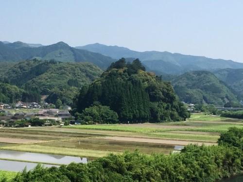 トトロの森 雨宮神社 (1)