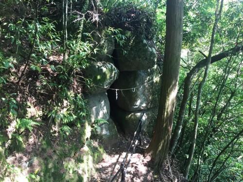 トトロの森 雨宮神社 (15)