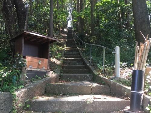 トトロの森 雨宮神社 (4)