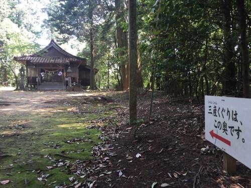 トトロの森 雨宮神社 (5)