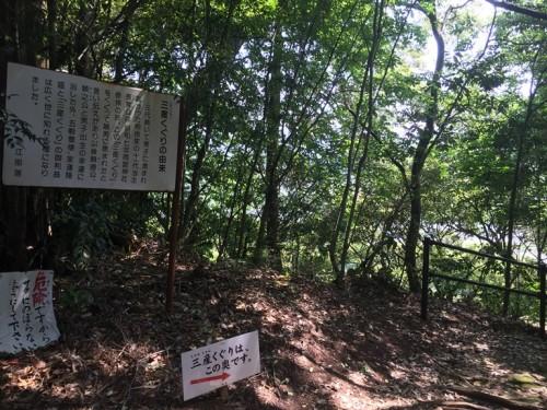 トトロの森 雨宮神社 (8)